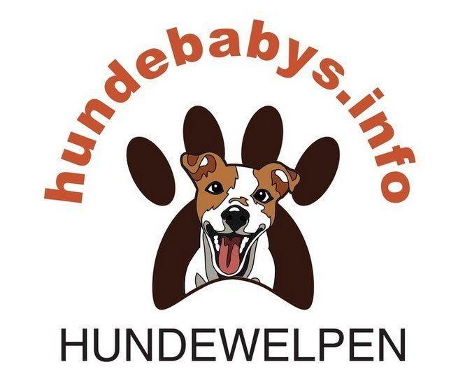 Hundewelpen - Logo